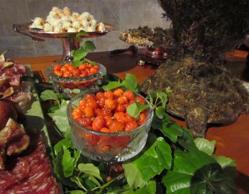 Buffet de Casamento com Espaço Próprio Santa Cruz da Esperança - Buffet de Churrasco para Casamento