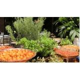 buffet de festa de aniversário preço Santo Antônio da Alegria